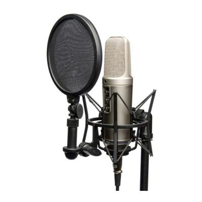 Rode NT2-A Multi-Pattern Dual 1 Condenser Microphone